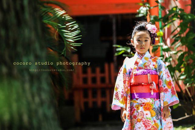 神戸の小野八幡神社 ロケ撮影はココロスタジオ