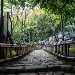 相楽園‗ロケ撮影‗0043