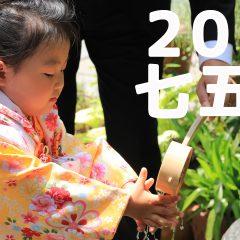 三宮ココロスタジオの七五三前撮り|神戸市中央区、八幡神社